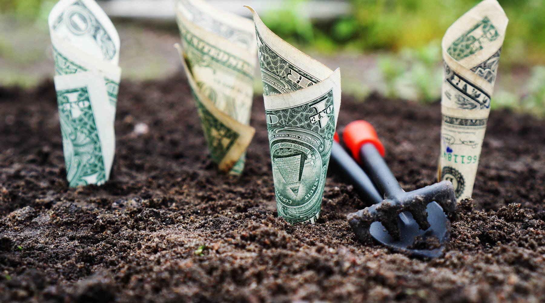 Investment Crowdfunding 101 [Free Course]
